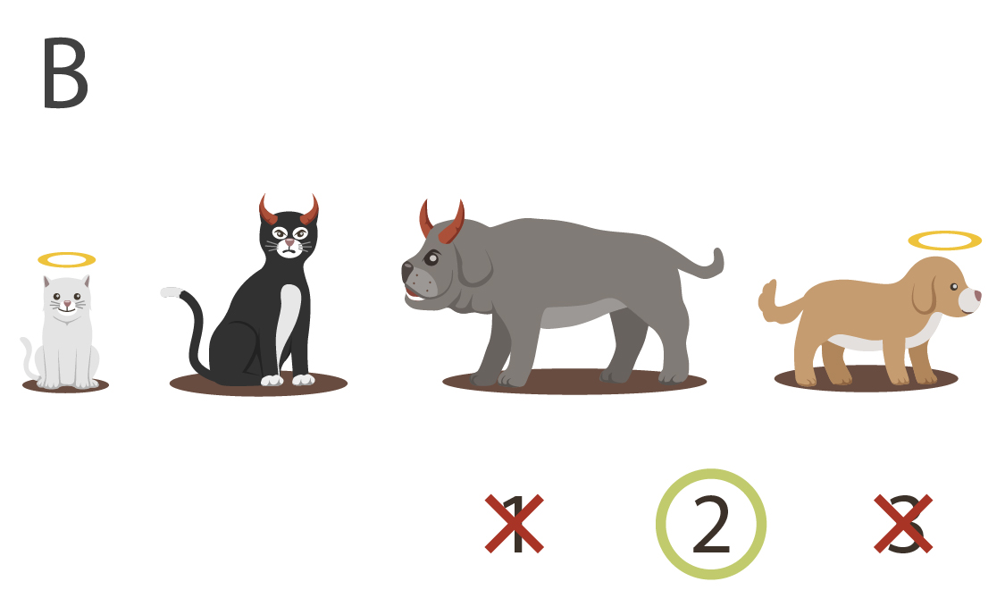 little innocent kitten, big evil kitten, big evil dog, little innocent dog